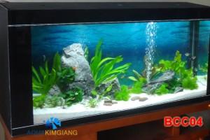 Bể cá cảnh – Bể cá thủy sinh BCC04