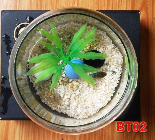 Bể cá mini BT02-02