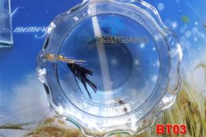 Bể mini – Bể tròn BT03