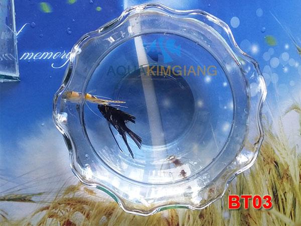 Bể cá mini tròn miệng bèo BT03
