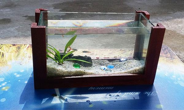 Bể cá mini CN01 - 2