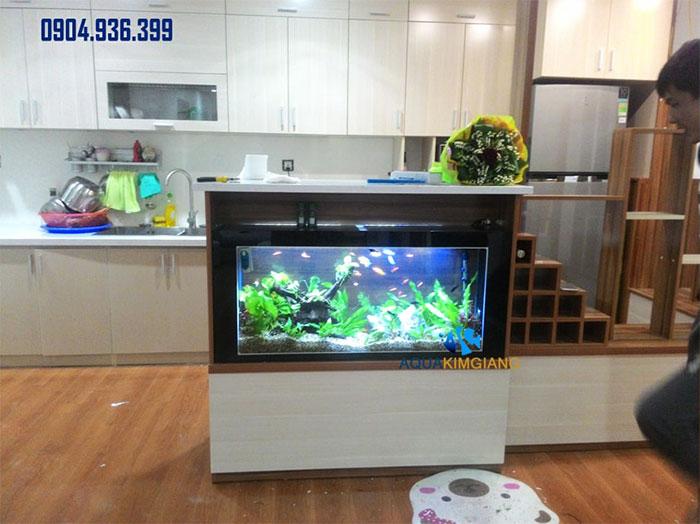 Bể cá cảnh mini BCC05
