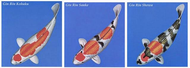 KIN/ GINRIN