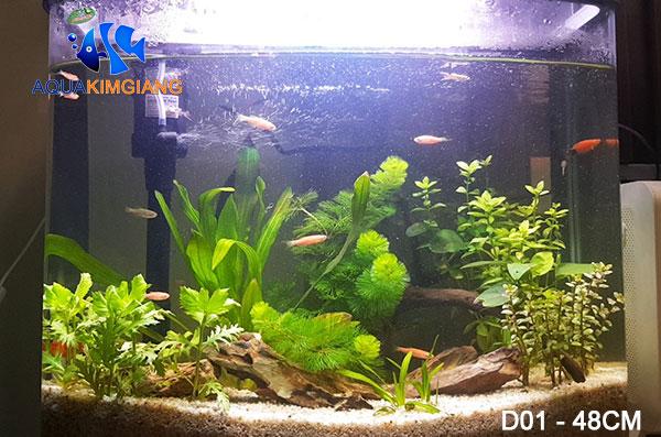 Bể cá D01 dài 48cm