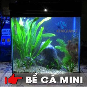 Bể cá cảnh mini CN04