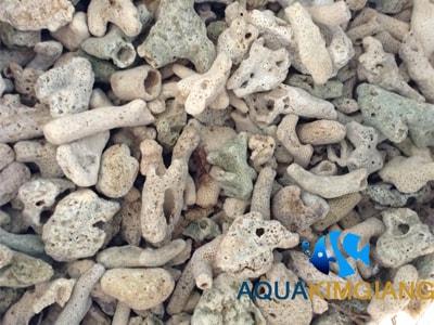 Vật liệu lọc san hô vụn