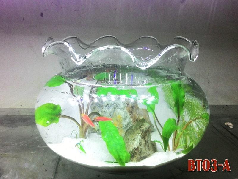 Bể cá tròn BT03