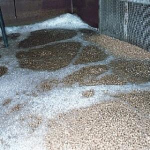 Hạt lọc nước Kaldnes cho hệ thống lọc nước bể cá cảnh