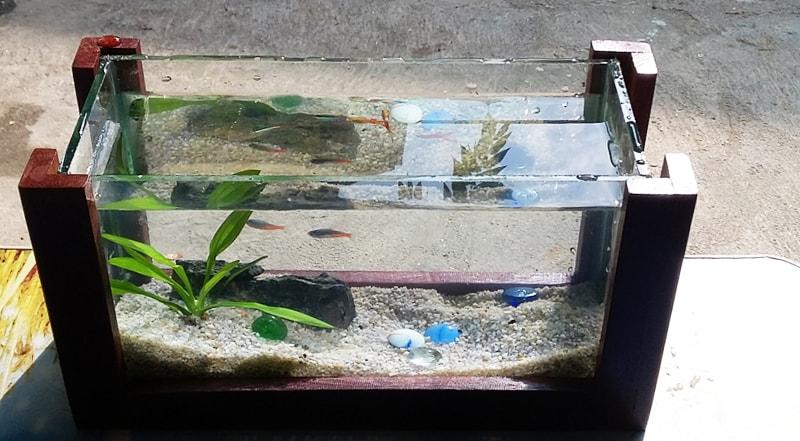 Bể mini khung gỗ CN01