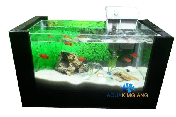 Bể cá mini CN 01 khung gỗ