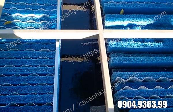 Bùi nhùi - Vật liệu lọc hiệu quả cho hồ cá koi