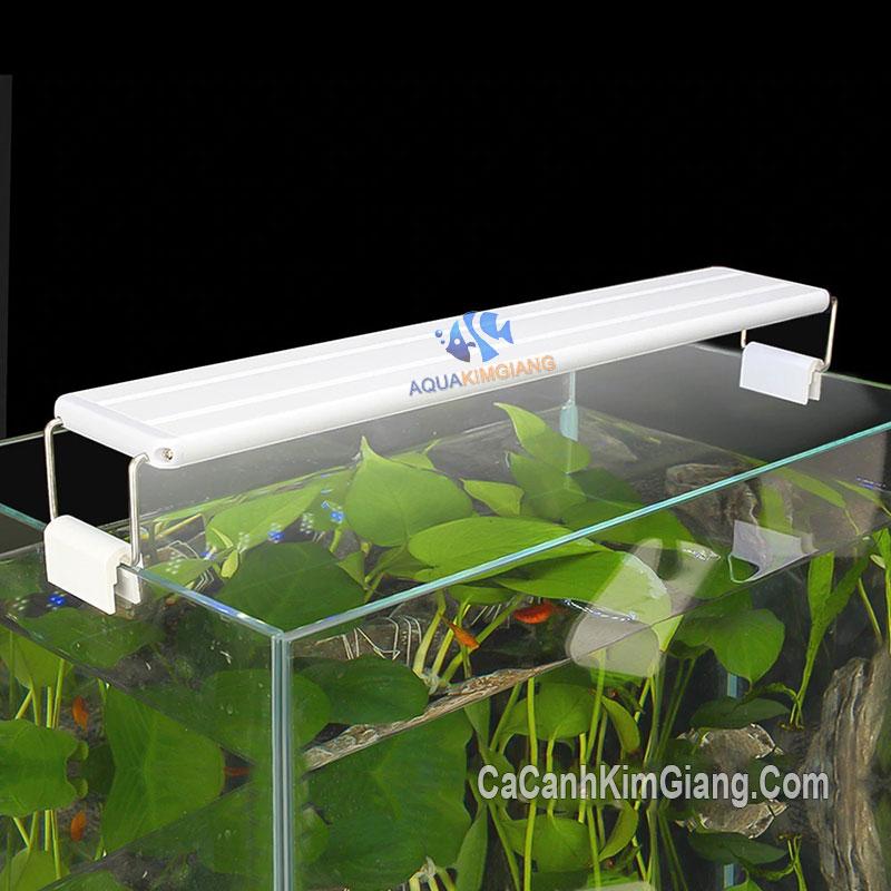 Roxin GX-K500 cho bể cá dài 50 - 60cm